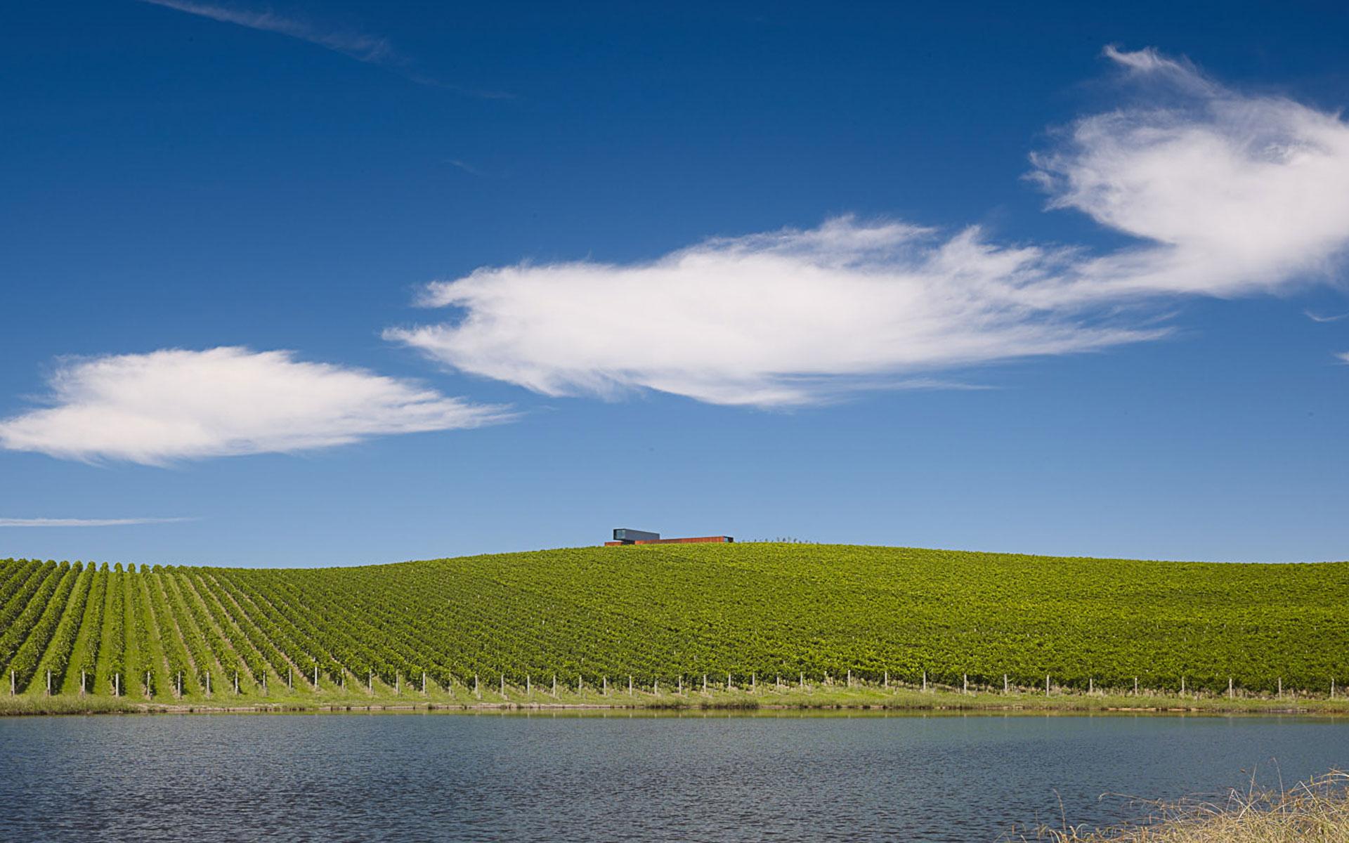 View hill house vineyard yarra valley australia denton for Garden design yarra valley